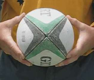Image of hands holding rugby ball
