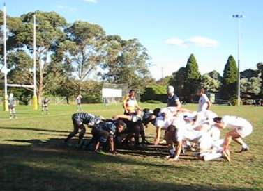 Rugby number eight prepares at the back of a scrum